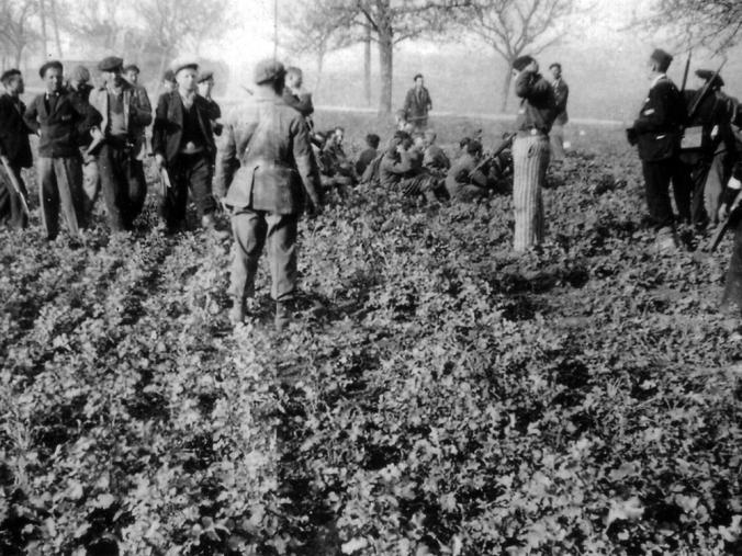 pix_buchenwald_75_Bewaffnete Häftlinge nehmen in der Nähe des befreiten Lagers SS-Männer gefangen, 11. April 1945